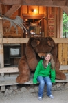 Bears in Skagway Alaska